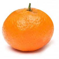 Risultati immagini per immagine mandarino tardivo