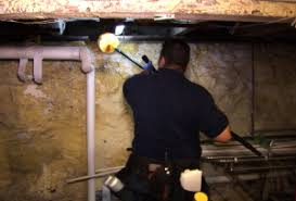 Image result for Pest Services Chester NJ