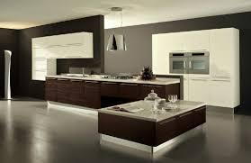 Wall For Kitchens Best Grey Wall Kitchen Ideas 6934 Baytownkitchen