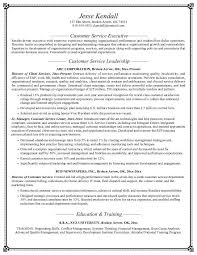 Resume Objective Examples Customer Service   good objective for resume happytom co