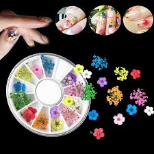 <b>Pdtoweb</b> 18 Pcs <b>3D</b> Nail Art Tips Mixed Dried Flower Design ...