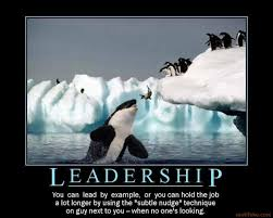 Humorous Quotes On Leadership. QuotesGram via Relatably.com
