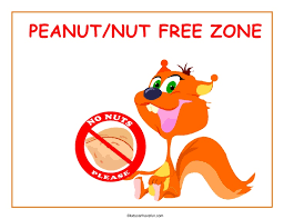 Image result for peanut free