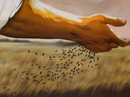 Image result for the sower