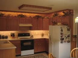 Kitchen Cabinet Accent Lighting Traditional Other Metro