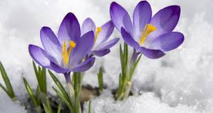 <b>2019 Spring Weather</b> Forecast: When Will It Warm Up? - Farmers ...
