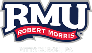 NYU and IBM Activities Robert R  Morris