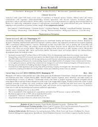 credit analyst resume sample template credit analyst resume sample