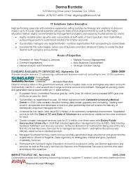 areas of expertise resume resume format pdf areas of expertise resume perfect attorney resume sample featuring additional skills and job description a part