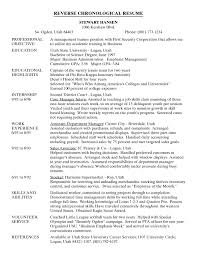 Resume Sample Cv Ppt  mention name in revenue company fmcg resume     raubachz nvr    com example other example