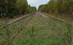"""Résultat de recherche d'images pour """"voies ferrées abandonnées en france"""""""