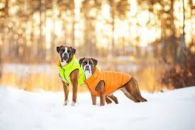 <b>Airy Vest</b> зимние куртки на молнии для собак (<b>Collar</b>, Украина)