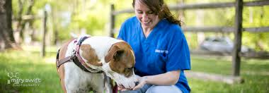 Donate | Baltimore Humane Society