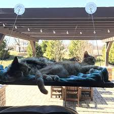 <b>Cat Hammock Window Bed Perch Seat</b> Sunny for Lager <b>Cats</b> ...