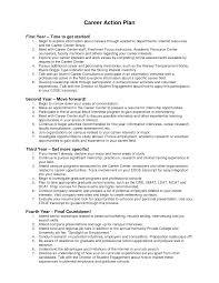 career plan essay sample how to write a career plan  chroncom