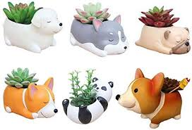 6 PCS Set Cute Cartoon Animal Corgi Husky ... - Amazon.com