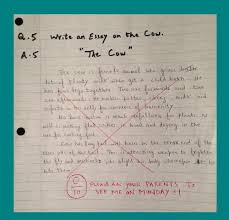 essay writing competitions for high school students  writing
