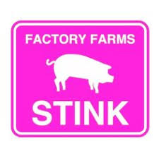 Image result for Ban factory farm images