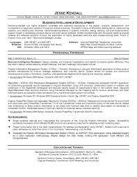 sample of business resume  tomorrowworld cosample