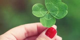 Fun Facts About <b>Four</b>-<b>Leaf</b> Clovers for St. Patrick's Day   Better ...