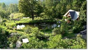 Image result for permaculture pic