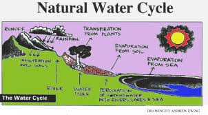 soil water cycle soil printable water cycle water cycle water cycle tedfloyd s blog source