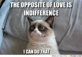 the opposite of love is INDIFFERENce... - grumpy cat Meme ... via Relatably.com