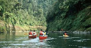 Image result for whanganui national park new zealand