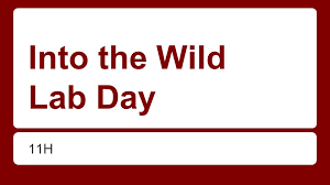 into the wild lab day h swbat draft their introduction and  into the wild lab day h