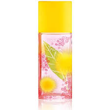 Elizabeth Arden Green Tea Mimosa Eau de Toilette ... - Amazon.com