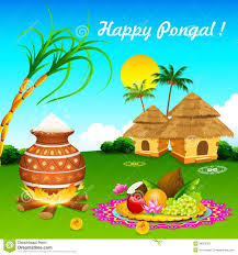 pongal festival clipart clipartfox happy pongal stock image