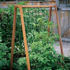 Small Picture Building A Frames Tomato trellis Martha stewart and Gardens