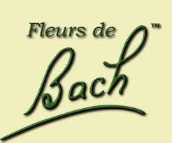 """Résultat de recherche d'images pour """"Fleurs de Bach"""""""