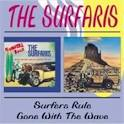 Surfers Rule/Gone with the Wave