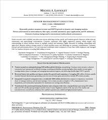 ceo resume template –    free samples  examples  format download    senior executive resume samples