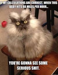 Your death Will be the most agonizing - Colonel Meow - quickmeme via Relatably.com
