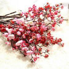 Красное дерево <b>бонсай</b> ЦВЕТОЧНЫЙ ДЕКОР - огромный выбор ...