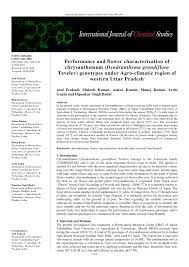 (PDF) Performance and flower characterization of chrysanthemum ...