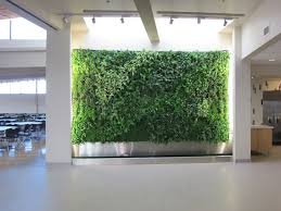indoor green wall with simple modern ideas a little of plant office design inspiration amazing office plants