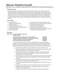 the best example summary for resume summary resume sample