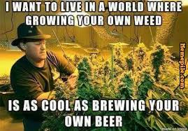 I want to live in a world,where growing yourown,weed,is as cool as ... via Relatably.com
