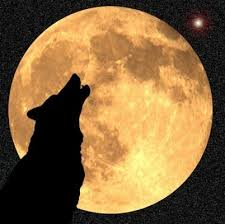 La lune se couche Images?q=tbn:ANd9GcTLaYTWmJ4cRl85sZfQTi3T1oGwxpZXcCbnxOJNtjF1LUUjhdhxfw