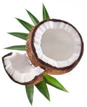 Image result for coconut oil