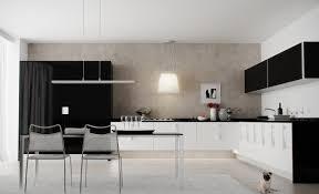 Black White Kitchen Designs Modern White Gloss Kitchen Cabinets Kitchen Ideas Cool Clear