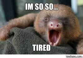 im so so... tired - ermahgerd sloth - quickmeme via Relatably.com