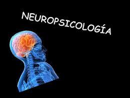 Resultado de imagen de neuropsicología