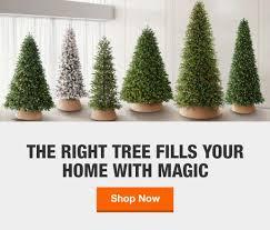 <b>Christmas Trees</b> - The Home Depot