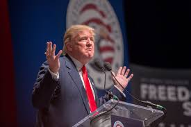 Image result for Donald Trump photographs