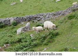 231 <b>Rocky wall rock stone</b> rural Posters and Art <b>Prints</b> | Barewalls