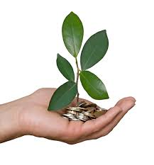 does corporate social responsibility increase profits    business    sustainability palm w coins feature most executives believe that csr